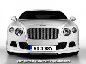 Reg Plates Rob Number 13 Series