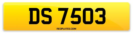 Registration DS 7503